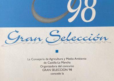 Primer premio Gran Selección de Castilla-La Mancha 1998